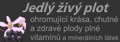 Jedlý živý plot - WonderHedge